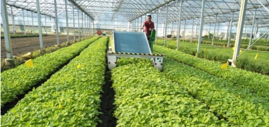 蔬菜机械化(共39套打包)