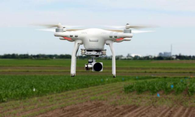无人机将是植物育种学家的下一个目标