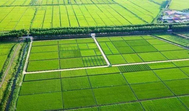 农业农村部 财政部联合部署2020年农业生产发展等项目实施工作