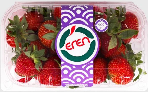 俄罗斯对土耳其草莓的需求量增大