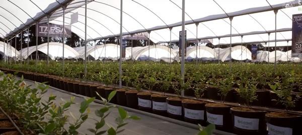 墨西哥农业博览会(Expo AgroAlimentaria)将如期举行