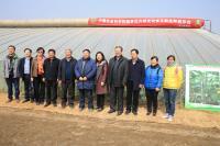 五位院士参加的黄瓜品种中农26展示会0.jpg
