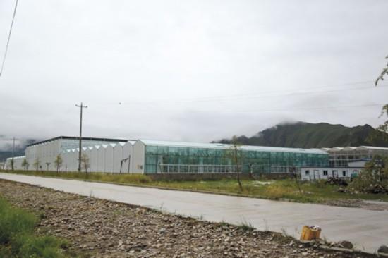西藏:达孜农业科技园智能连栋温室.jpg