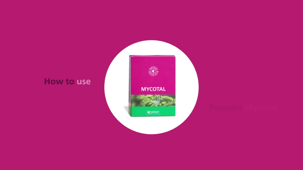 How to use Mycotal from Koppert.mp4