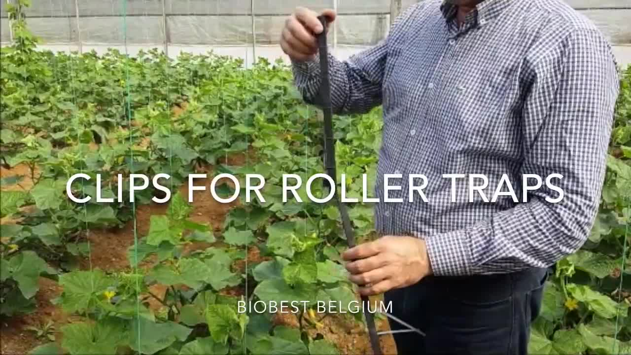 How to use clips for roller traps from Biobest.mp4